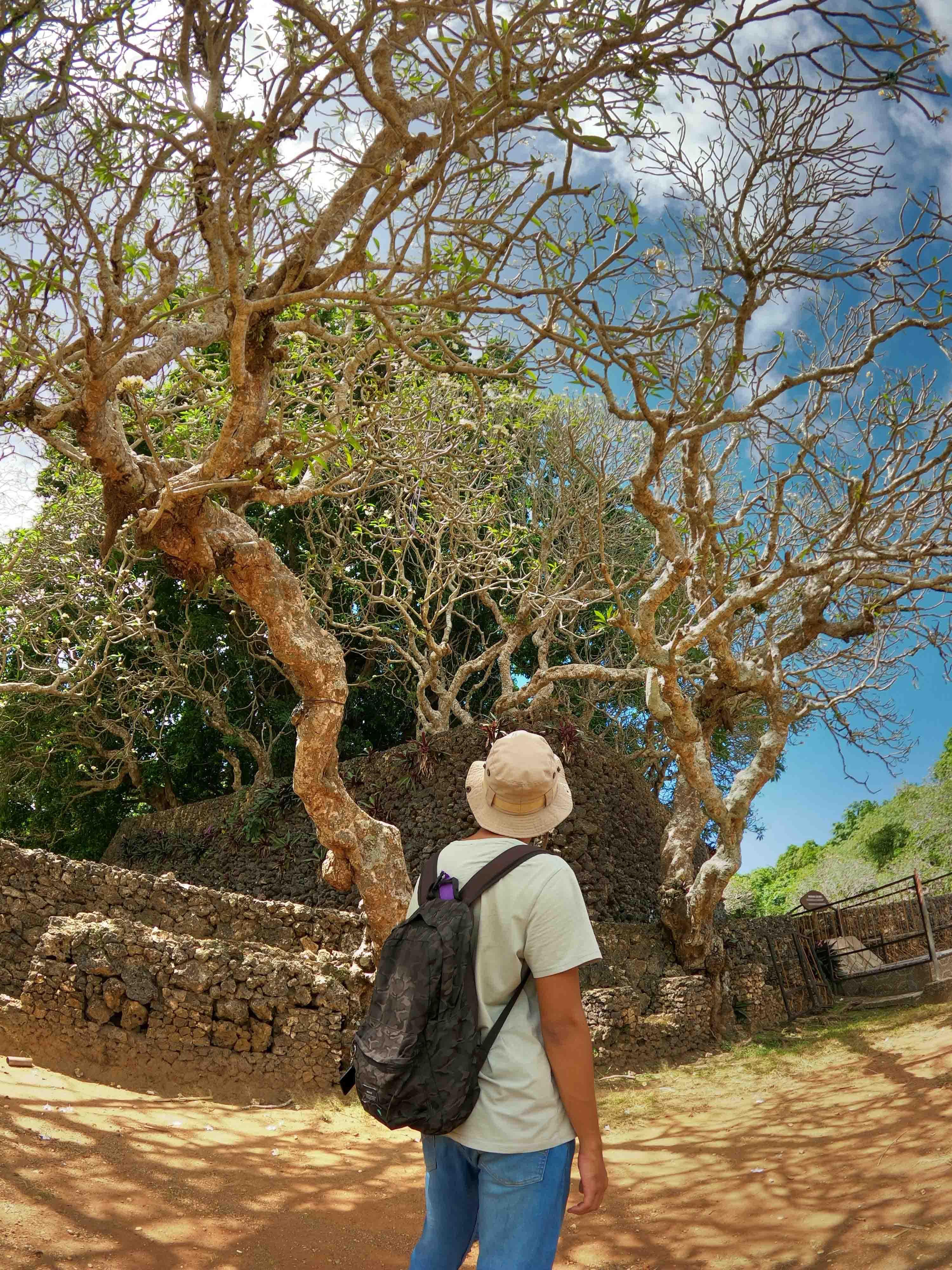 Putra Tomia Wakatobi - Private Trip Wakatobi